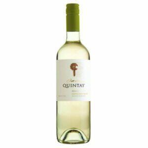 Wine Maven | quintay sauvignon blanc 2013